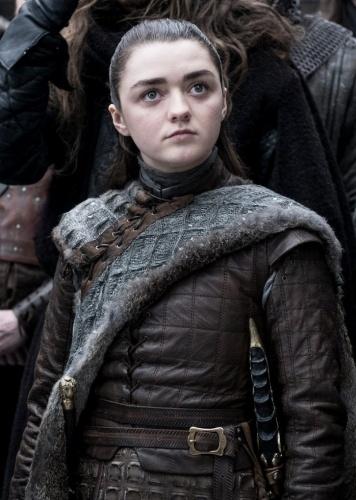 8. sezonu dair neredeyse hiçbir detayın verilmediği karelerde Sansa ve Arya Stark, Jon Snow, Daenerys, Cersei, Tyrion, Jamie Lannister, Davos Seaworth ve Brienne gibi karakterler fotoğraflarda yer alıyor.