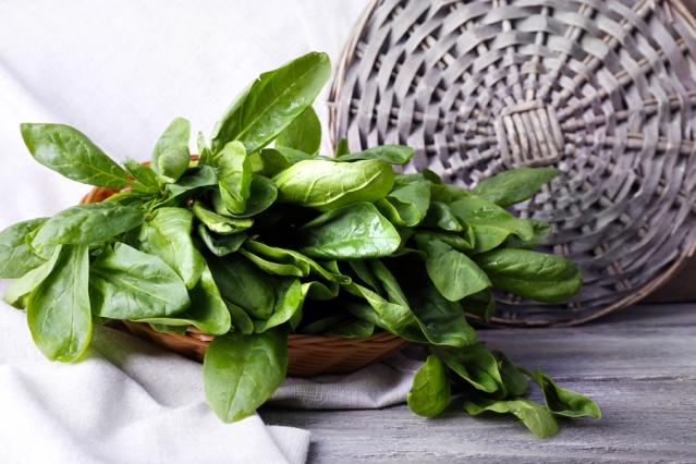 SEBZELER  Yeşil yapraklı sebzeler: Ispanak, pazı ve diğer koyu yeşil yapraklı sebzeler içerdikleri zengin folik asit sayesinde yumurta kalitesini artırıyorlar. Ayrıca genetik anormalliklere bağlı düşük riskini de azaltıyorlar.  Brokoli: Yumurtlama için hayati önem taşıyan C vitamini ve folik asit açısından zengin bir besin. C vitamininin progesteron hormonunun hücre içine nüfuz etmesine yardımcı olup lüteal faz yetmezliği riskini azalttığı bildiriliyor.