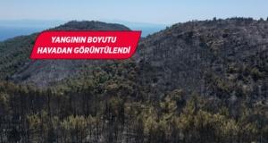 Menderes'te yangının ardından kahreden tablo!