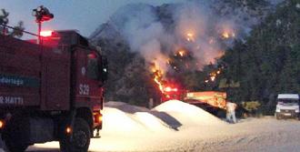 Milas'ta 3 Ayrı Yerde Yangın
