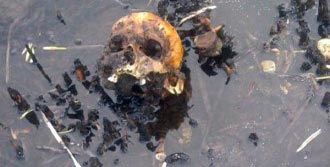 Sazlıkta İnsan Kemikleri Bulundu