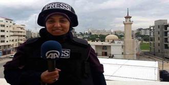 AA Muhabiri Serbest Bırakıldı