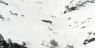 Fransa'da Dört Dağcı Çığ Kurbanı