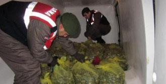 1 Ton 325 Kilo Kaçak Midye Ele Geçirildi
