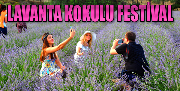 Seferihisar'da Lavanta Kokulu Festival
