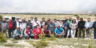 18 Ülkeden 35 Ormancıya, Mersin'de Eğitim Gezisi