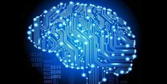 En Büyük Beyin Simülasyonu