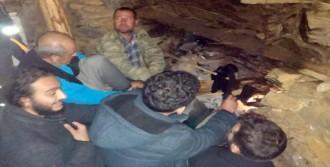Kampçıları Belediye Ekibi Kurtardı