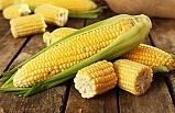 Eğer mısırı böyle tüketirseniz...