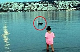 Ege'de siyah kuğu alarmı: Türkiye'de ilk kez görüldü