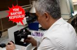 Egeli bilim insanları bakteri keşfetti