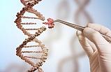 Etkin DNA tamiri ile sağlıklı yaşlanmak mümkün