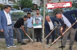Narlıdere'de, sekiz fidana sekiz Çınar!