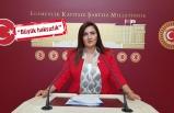 CHP'li Kılıç'tan avukatlar için 'yeşil pasaport' hamlesi