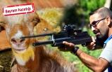 İzmir'de hayvan yakalama timi göreve hazır!