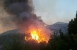 Sivas'ta ormanlık alanda çıkan yangın, yerleşim yerlerini tehdit ediyor