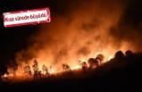İzmir'de gece yarısı yangın paniği