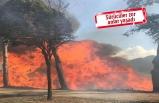 İzmir'de yol kenarındaki yangın korkuttu