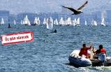 İzmir Körfezi'nde 'şenlik' var!