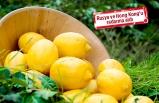Ege Yaş Meyve Sebze İhracatçıları Birliği'nden tanıtım atağı