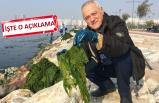 O profesör İzmir'deki zehirlenme uyarısına açıklık getirdi