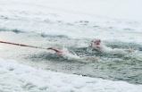 Kışın ortasında denizde yüzme yarışı