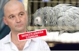 Murat Özdemir'in işkence uyguladığı papağandan acı haber!