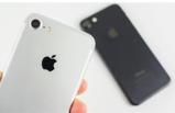 iPhone 7 ve iPhone 8 için şok yasak kararı!