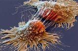 Kanser ilaçlarını kökten değiştirecek buluş