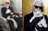 Kedisine de milyonlar bıraktı