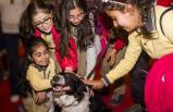 Pet İzmir'de eğlence zirve yaptı