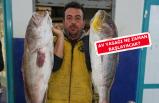 Egeli balıkçılar sezonu bereketli kapatıyor!