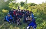 168 kaçak yakalandı, 4 organizatör tutuklandı