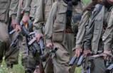 Hakkari'de teröristlere ağır darbe