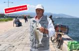 İzmir'de çipura ve lidaki zamanı
