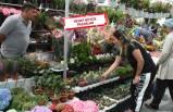 İzmir'in mis kokulu festivali başladı