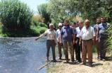 Çiftçilerden Küçük Menderes'te 'kirlilik' tepkisi