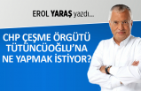 Erol Yaraş yazdı: CHP Çeşme Örgütü, Tütüncüoğlu'na ne yapmak istiyor?
