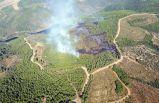 İzmir'de kızılçam ormanında korkutan yangın!
