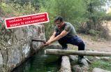 AK Partili Dağ'dan doğaya saygı mesajı