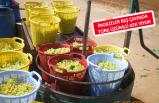 Çinliler, Türk üzümünü çok sevdi