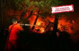İzmir'e özel ekip: Yangının çıkış nedenini...