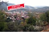 Karakızlar'da 'Börülce' festivali