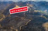 İzmir'de yanan alanın gerçek boyutu ne? O kurum açıkladı!