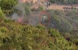 Bakan açıkladı: Pendik orman yangınında terör bağlantısı