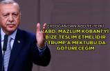 'ABD, Mazlum Kobani'yi bize teslim etmelidir'