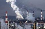 IMF: Karbon vergisi gelsin