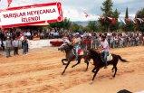 Ödemiş'te rahvan at yarışları yapıldı
