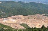 Bakan'dan Kaz Dağları açıklaması: Durdurduk