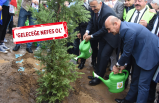 İzmir'de on binlerce fidan toprakla buluştu